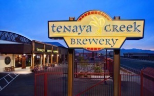 Tenaya-Creek-New